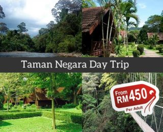 Taman Negara Day Trip (Group)